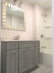 Bathroom_with_Forevermark_Nova_Light_Grey_Vanity